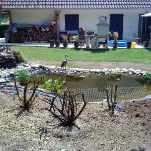 bassin-agrement-14