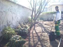 chantier-plantations-13
